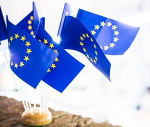 Europa-Kolleg_JAN2014-2136